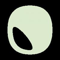 Icon_vert_foncé